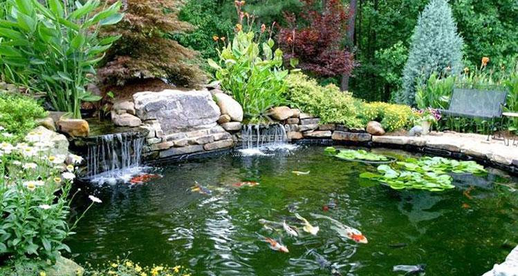 Xu hướng thiết kế cảnh quan với dòng nước