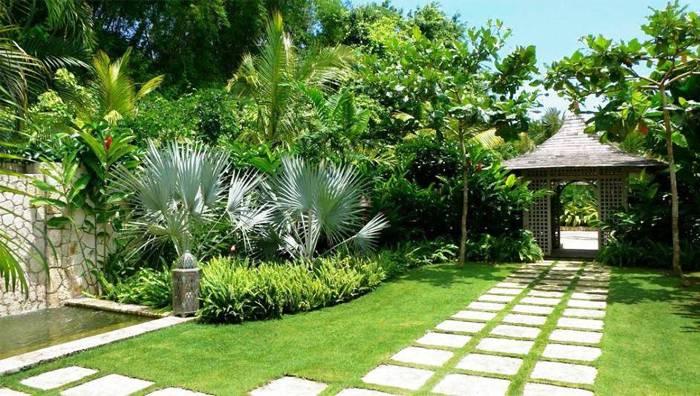 Các loại cây cảnh trồng sân vườn đẹp