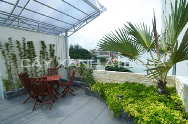 Thiết kế, thi công sân vườn trên sân thượng đẹp, giá rẻ