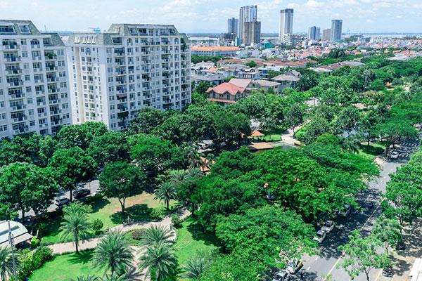 Các loại cây xanh đô thị TpHCM